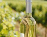 Vinho Branco | Foto: Divulgação