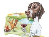 Vinhos autorais Cão Perdigueiro | Foto: Divulgação