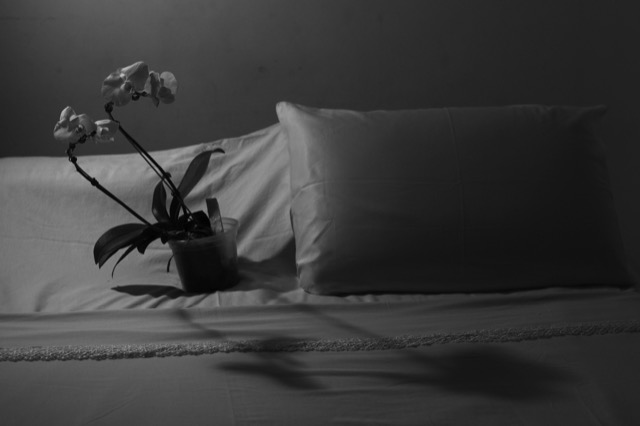 La petit mort, 2021. Tríptico fotográfico. 30 x 45cm (cada) | Foto: Nathan Braga