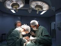 TSetembro Verde - Transplante Santa Casa | Foto: Igor Sperotto